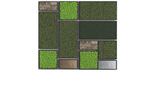 Bio Canvas Moss Walls