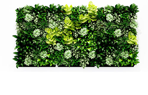Leaf Living Walls